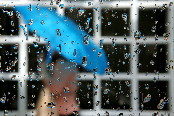 Focus On Foreground「Rain Shower In Miami」:写真・画像(4)[壁紙.com]