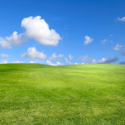 緑色「すっきりとしたグリーンの景観に澄んだ空」:スマホ壁紙(10)