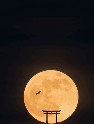 Moon「Abstract image of tori gate and flying hawk.」:スマホ壁紙(11)
