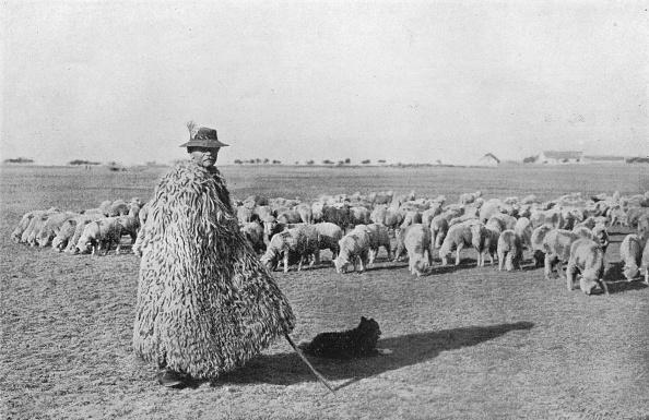 キャラクター「A Typical Shepherd And His Flock On The Plains Of Hungary 1915」:写真・画像(19)[壁紙.com]