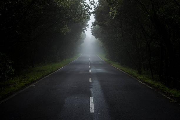 Empty country road in the fog:スマホ壁紙(壁紙.com)