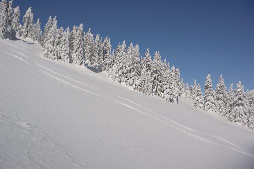 グルノーブル「Slope with ski tracks」:スマホ壁紙(12)