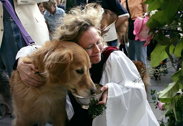 動物「Washington National Cathedral Holds Annual Blessing Of The Animals」:写真・画像(6)[壁紙.com]