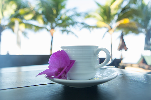 Southeast Asia「Beachside coffee cup with tropical flower clsoeup」:スマホ壁紙(11)