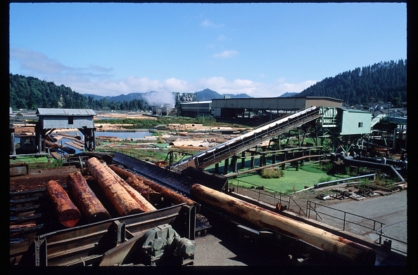 Timber「California Redwood Industry」:写真・画像(12)[壁紙.com]