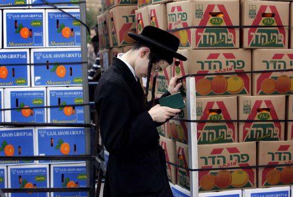 Orange - Fruit「Ultra-Orthodox Jews Prepare For Passover Festival」:写真・画像(14)[壁紙.com]