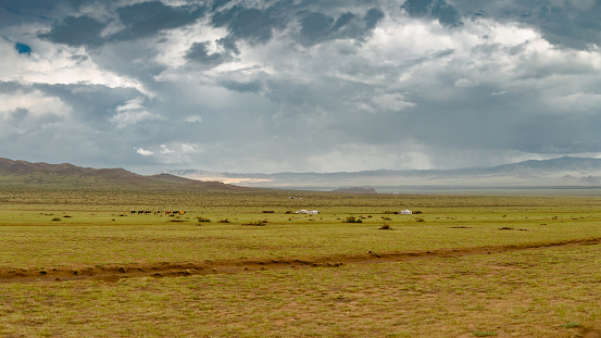 Horse「Hilly steppe Republic of Mongolia.」:スマホ壁紙(16)