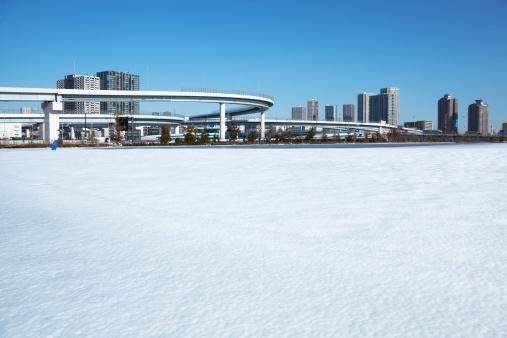 Public Park「The park covered with snow」:スマホ壁紙(7)