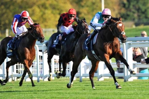 Racing at Ascot 2011:ニュース(壁紙.com)