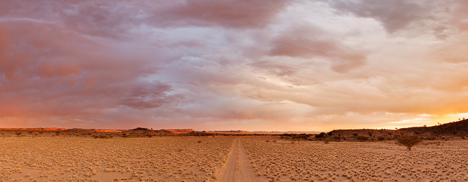 Specimen Holder「The dirt road leading into the Mesosaurus Fossil Site and Quiver Tree Forest, Namibia. Full colour horizontal landscape image.」:スマホ壁紙(13)