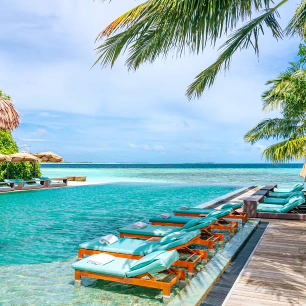 Tanning Beds Beside Swimming Pool in Tropical Resort in Maldives:スマホ壁紙(壁紙.com)