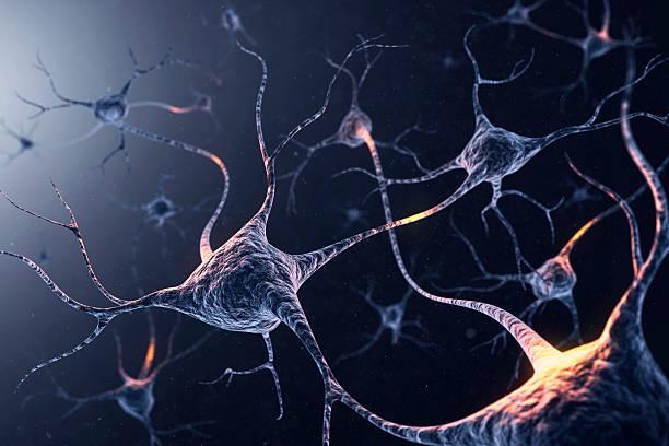 neuron system:スマホ壁紙(壁紙.com)