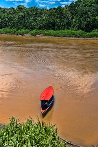 Amazon Rainforest「Tambopata River in Peruvian Amazon」:スマホ壁紙(19)