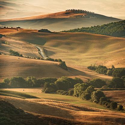 Chianti Region「Sunny afternoon in Tuscany」:スマホ壁紙(13)