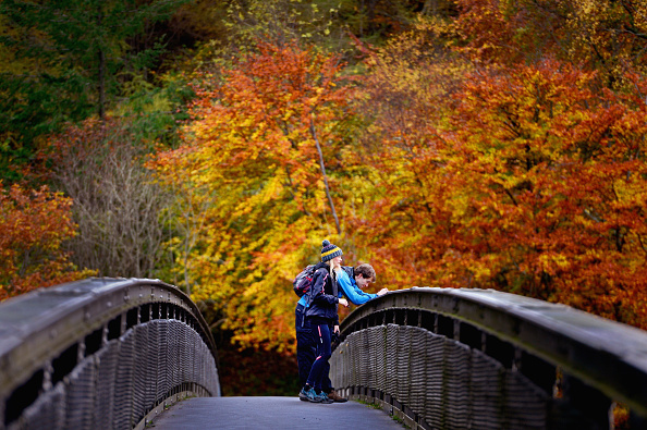 Season「Autumn In The UK」:写真・画像(11)[壁紙.com]