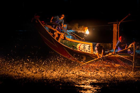 Bestpix「Taiwanese Fishermen Use Traditional Fire Fishing Method」:写真・画像(19)[壁紙.com]
