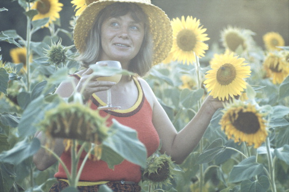 花畑「Mai Zetterling」:写真・画像(17)[壁紙.com]