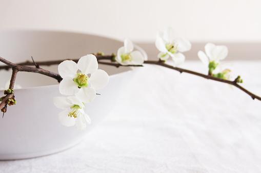 カリン「マルメロブランチに、ホワイトフラワーボウルにホワイトのテーブル」:スマホ壁紙(2)