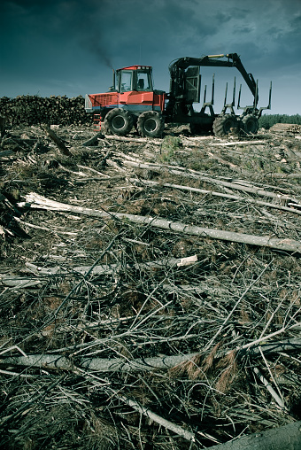 Amazon Rainforest「View of machine depicting remnants of deforestation 」:スマホ壁紙(12)