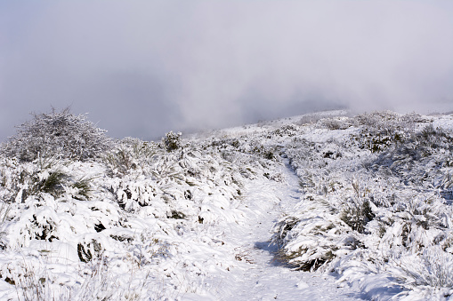 Camino De Santiago「Snow at Way of St. James, near Cruz de Ferro, Spain」:スマホ壁紙(0)