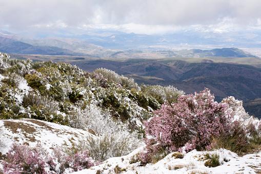 Camino De Santiago「Snow at Way of St. James, near Cruz de Ferro, Spain」:スマホ壁紙(12)