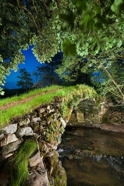 イネ科「Medieval Packhorse Bridge」:写真・画像(13)[壁紙.com]