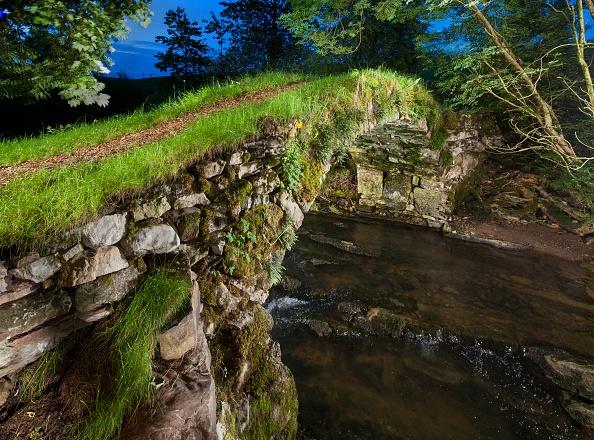 イネ科「Medieval Packhorse Bridge」:写真・画像(16)[壁紙.com]