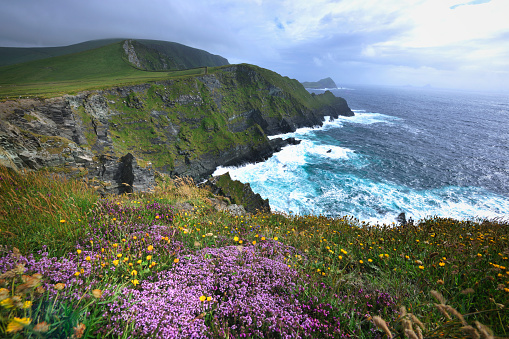 Ring of Kerry「Reef near Lomanagh in the Ring of Kerry」:スマホ壁紙(7)