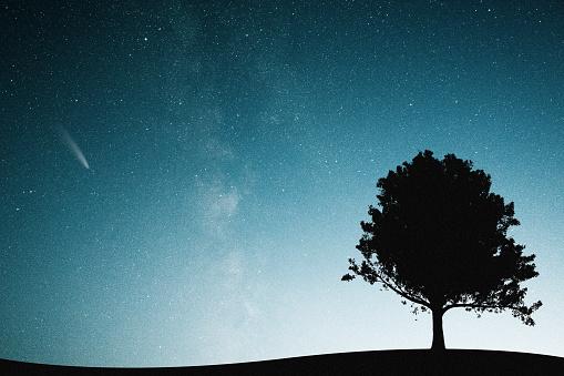 North Star「Mysterious night sky」:スマホ壁紙(12)
