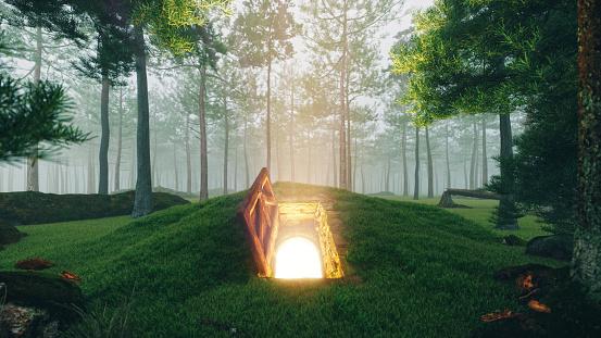 Fairy tale「Mysterious Open Hatch Door In The Forest」:スマホ壁紙(17)