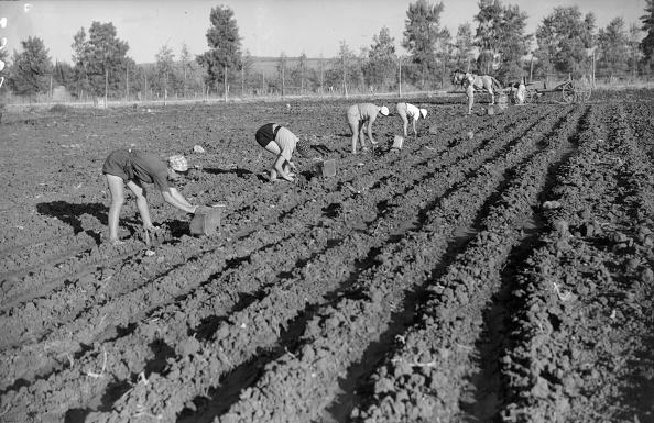 Plowed Field「Field Work」:写真・画像(19)[壁紙.com]