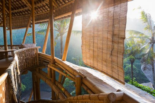 Ubud District「Sun shining on bamboo treehouse」:スマホ壁紙(11)