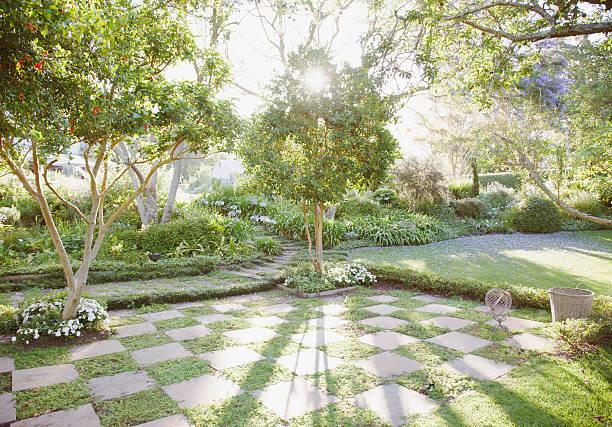 太陽輝くからの木の庭園:スマホ壁紙(壁紙.com)
