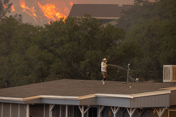 Sequoia National Forest「French Fire In California Burns Almost 15,000 Acres」:写真・画像(11)[壁紙.com]