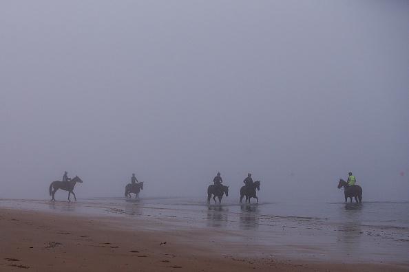 Sport「Heavy Fog Sits Over Suburbs Of Victoria」:写真・画像(11)[壁紙.com]