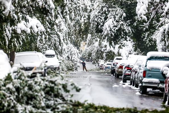 Winter「Early Season Winter Storm Blankets Colorado In Snow」:写真・画像(7)[壁紙.com]