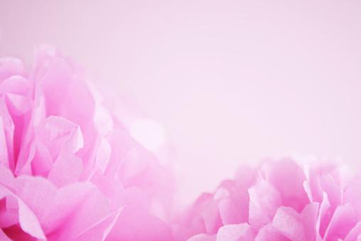Girly「ピンクの紙ポンポンポンズにピンクの背景」:スマホ壁紙(17)