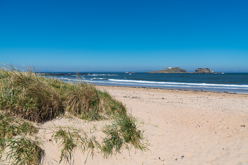 East Lothian「North Berwick, East beach, looking out to Fidra, Scotland」:スマホ壁紙(4)