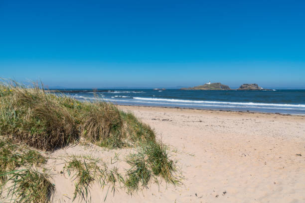 North Berwick, East beach, looking out to Fidra, Scotland:スマホ壁紙(壁紙.com)