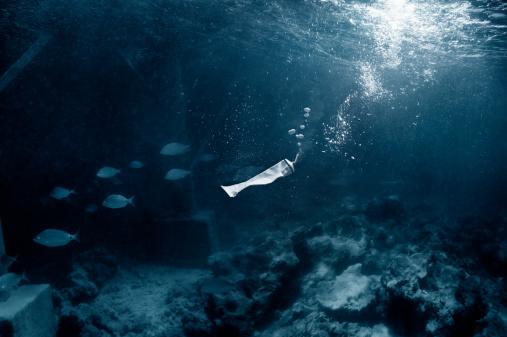 Fish「pollution 03」:スマホ壁紙(3)