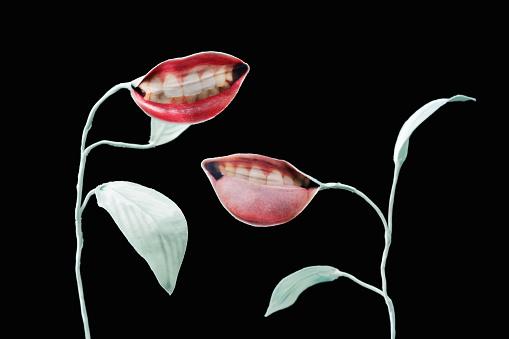 Sensuality「Surrealistic still life」:スマホ壁紙(2)