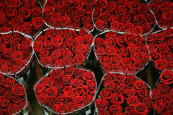 バレンタイン「Worlds Largest Flower Auction Prepares For Valentines Day」:写真・画像(11)[壁紙.com]
