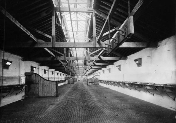 Empty「Horse Stalls」:写真・画像(17)[壁紙.com]