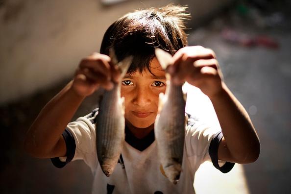 Parent「Overcrowding Continues At The Moria Refugee Camp」:写真・画像(12)[壁紙.com]