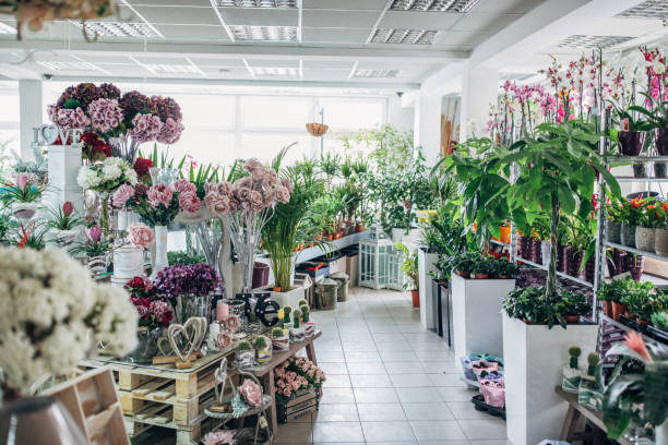 City flower shop:スマホ壁紙(壁紙.com)