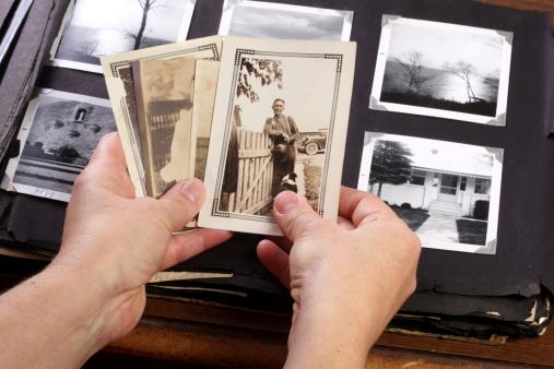 Family Tree「Hands Holing Vintage Memories」:スマホ壁紙(1)