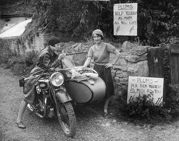 自転車・バイク「Plum Picking」:写真・画像(17)[壁紙.com]