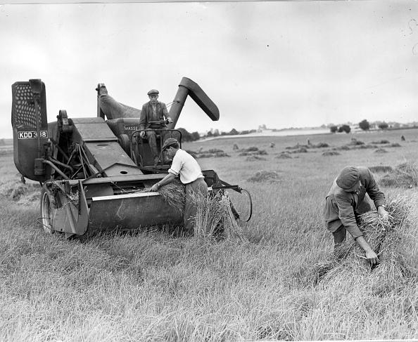 Agricultural Activity「Cocksfoot Harvest」:写真・画像(15)[壁紙.com]
