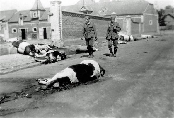 Farm「WWII Occupation France」:写真・画像(8)[壁紙.com]