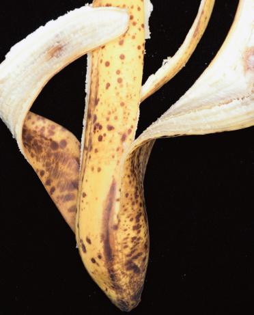 Banana「Banana Skin」:スマホ壁紙(5)